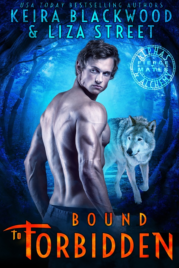 bound to forbidden_small